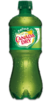 CANADA DRY Ginger Ale - Imported