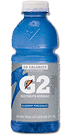 GATORADE G2 - Blueberry Pomegranate