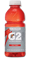 GATORADE G2 - Fruit Punch