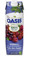 OASIS Classic - Wildberry