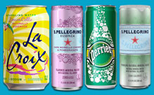 Bottled Water - Sparkling - Cans